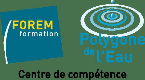 logo-polygone